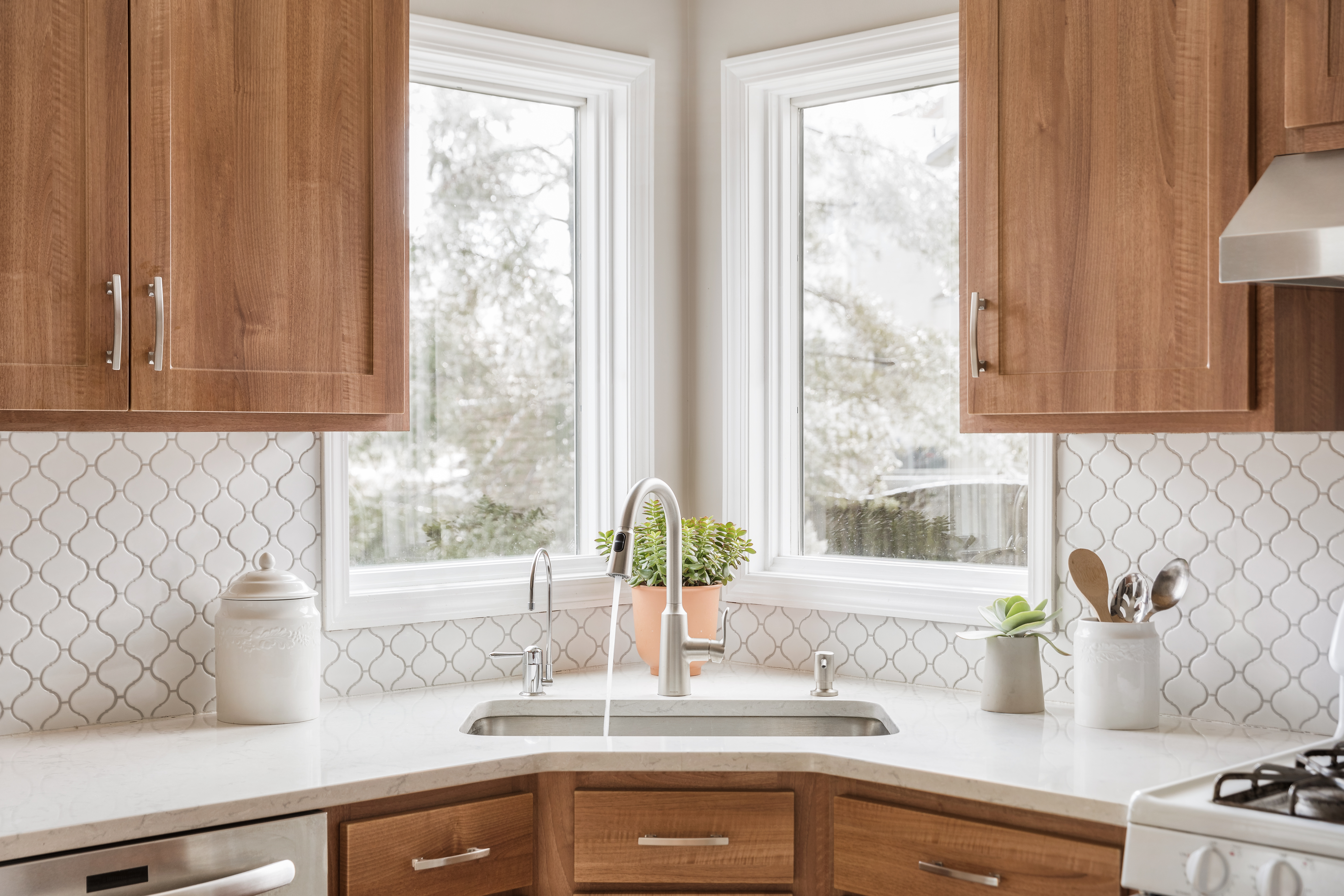 Jan Remodel of the Month Sink