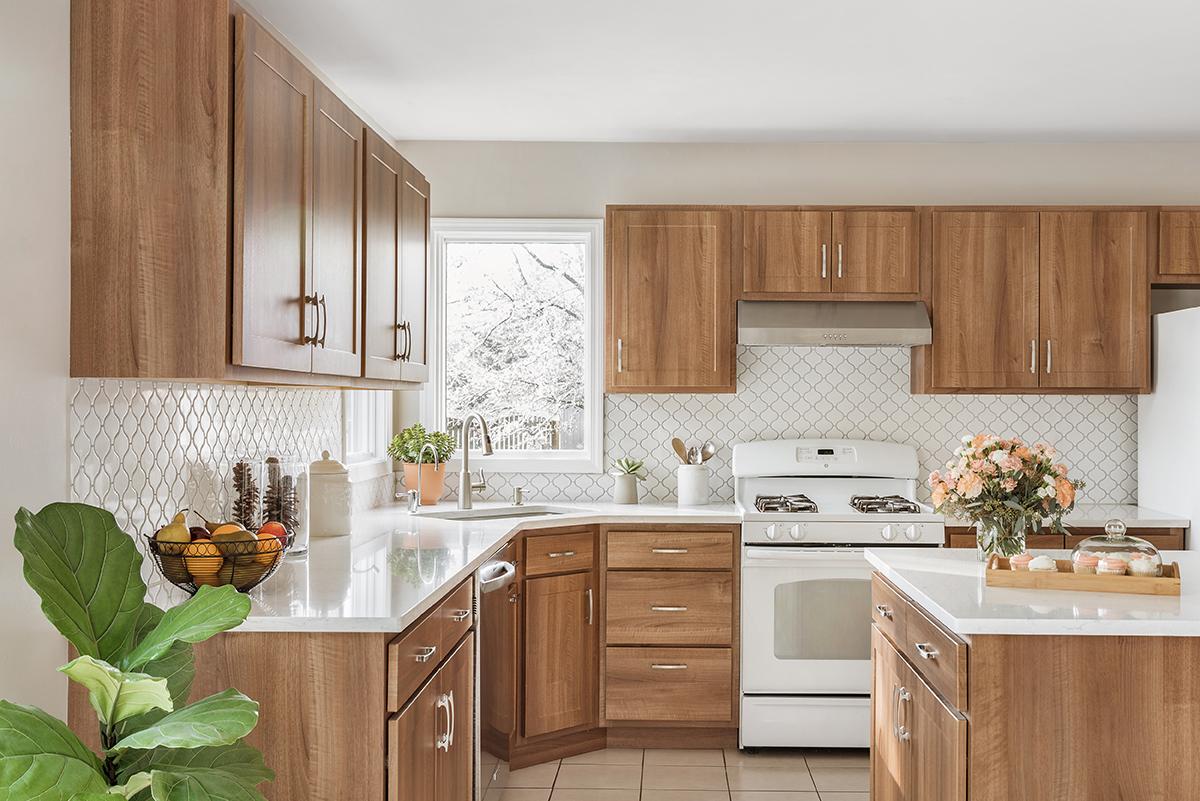 Jan Remodel Kitchen Cabinet Refacing