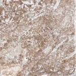 Noce Marble Backsplash